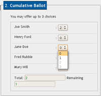 Screenshot of Cumulative Vote in WBS, with Javascript layer